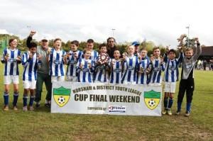 Under 12s Plate Winners 2014
