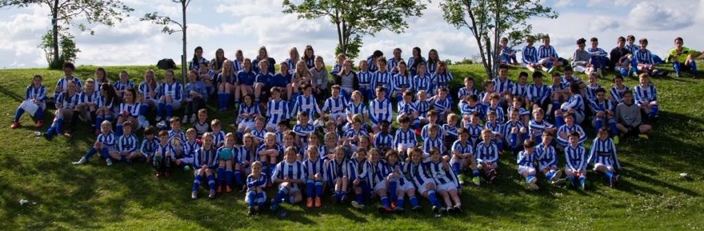 Horsham Sparrows FC 2015